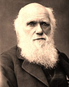Darwin a reluctant revolutionary of evolution
