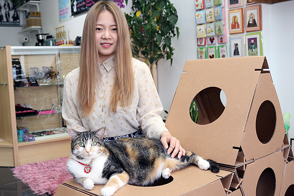 BRIAN BAKER/TOWN CRIER THE CAT'S MEOW: Erica Yun, manager of the Meow Cat Cafe, is bringing a popular business model from South Korea to midtown Toronto, and it's all thanks to her furry friends, like Coco the calico.